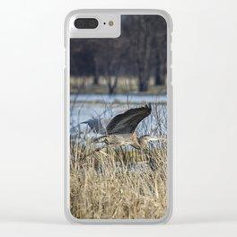 Great Blue Heron at Fern Ridge Clear iPhone Case