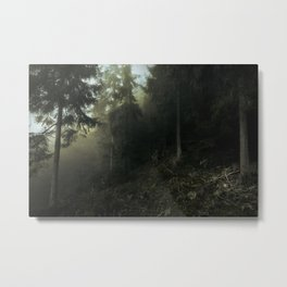 Darkwood Entrance Metal Print
