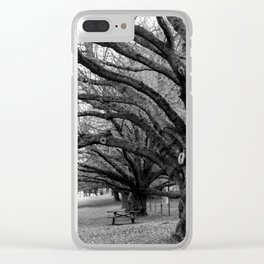 Mount Wilson, Blue Mountains Clear iPhone Case