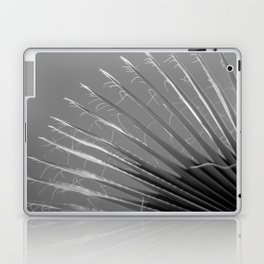 Old Palm Laptop & iPad Skin