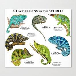 Chameleons of the World Canvas Print