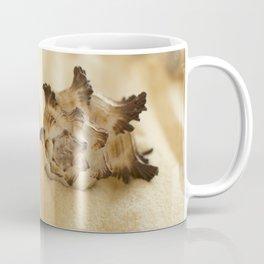 Black and White Murex Shell Coffee Mug