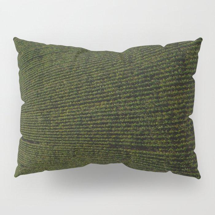 Rural Corn Fields Pillow Sham