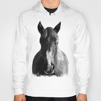 horse Hoodies featuring Horse by Amy Hamilton