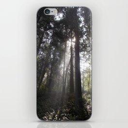 Deception Pass Trail iPhone Skin