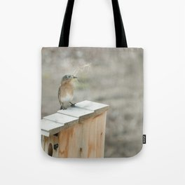 Build Your Nest Tote Bag