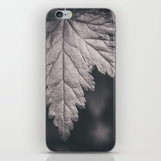 Black and White Forest Leaf iPhone & iPod Skin