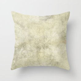Antique Marble Throw Pillow