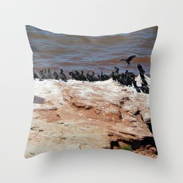 Double Crested Cormorant landing Throw Pillow