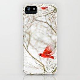 Cardinal Refraction iPhone Case