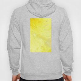 Abstract Yellow Sun by Robert S. Lee Hoody
