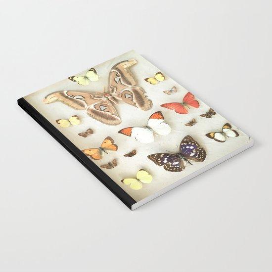 Butterflies and Moths Notebook