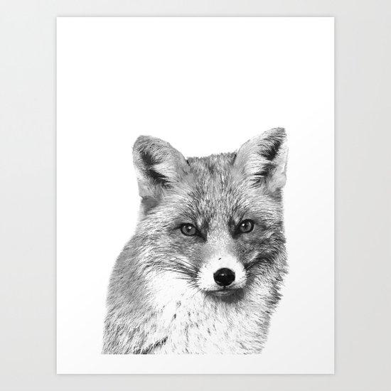 Black and White Fox by alemi