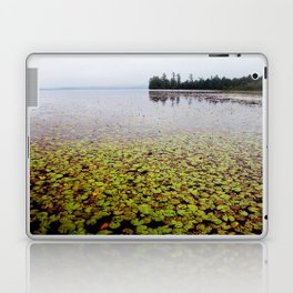 field of lilly pads Laptop & iPad Skin
