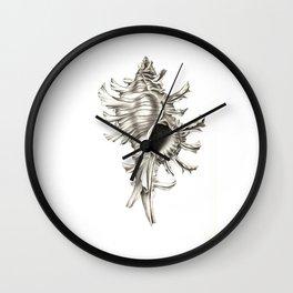 Shell 01 Wall Clock