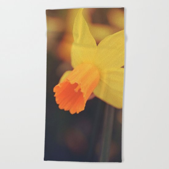 Yellow Narcissus Beach Towel