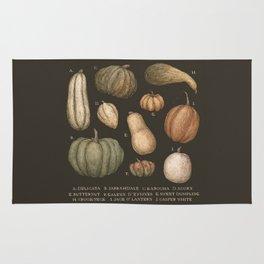 Pumpkins and Gourds Rug