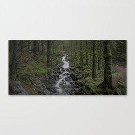 Where the Trolls Live Canvas Print