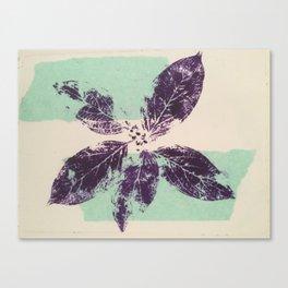 Leaf flower Canvas Print