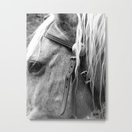 The Yellow Horse  Metal Print