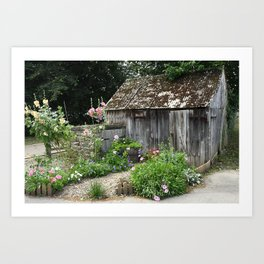 English Garden Shed Art Print