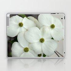 White Dogwood Laptop & iPad Skin