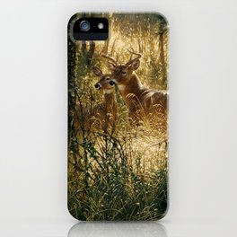 Whitetail Deer - A Golden Moment iPhone Case