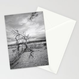 Death Valley I Stationery Cards