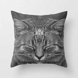The big Kahuna - My big Ginger Cat Throw Pillow