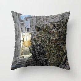 010 Throw Pillow