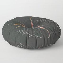 Dsungaripterus Weii Muscle Study Floor Pillow