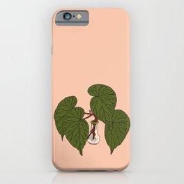 Begonia Houseplant Illustrated Print iPhone Case