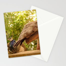 Paon Stationery Cards