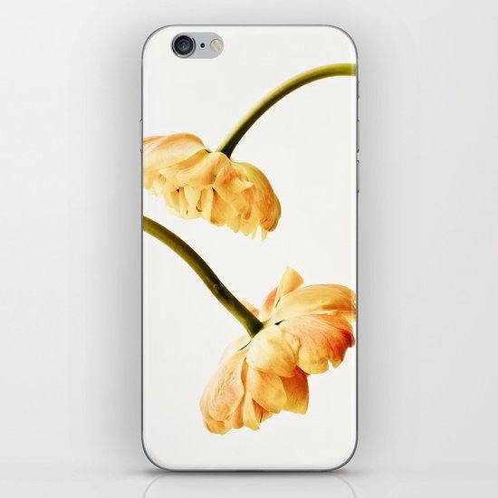 French Tulips iPhone & iPod Skin