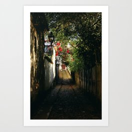 Secret Alley Art Print