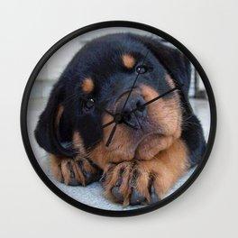 Riley  🐾  The Rottweiler Puppy  🐾 Wall Clock