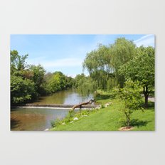 Day in the park Canvas Print