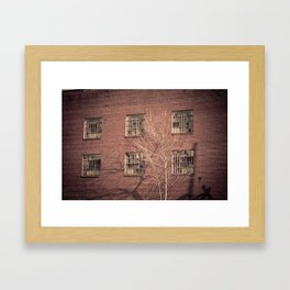 Broken Windows Framed Art Print