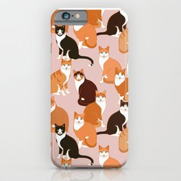 Ginger Cats iPhone Case