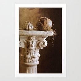CEBOLA Art Print