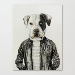 dog in leather Canvas Print