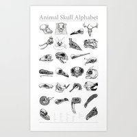 animal skull Art Prints featuring Animal Skull Alphabet by Stephan Brusche