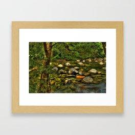 Majestic Mossman Gorge Framed Art Print