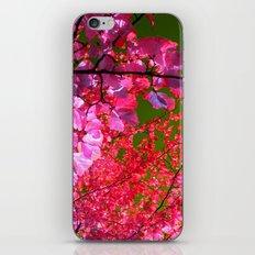 autumn tree VII iPhone & iPod Skin