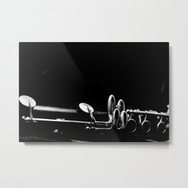 LIGHTLY TOUCHED Metal Print