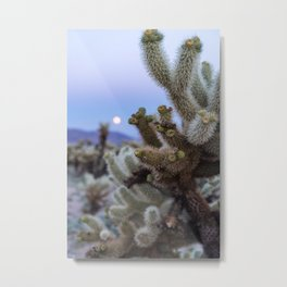 Cholla Cactus in Joshua Tree National Park at sunset with a super moon Metal Print