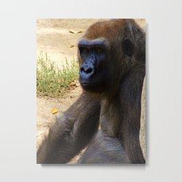 Gorilla just Chillin' Metal Print