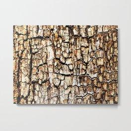 Golden Bark Metal Print