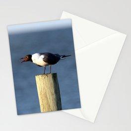 Ocracoke Seagull 3 Stationery Cards