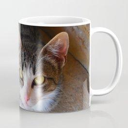 Toute petite Minette au soleil de midi. Coffee Mug